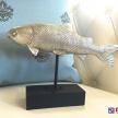 Soška / Ťažítko Ryba strieborná -  210264TRE