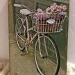 Obraz Bicykel s košíkom a kvetmi 3G- 14905TRE