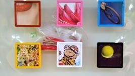 prevedenie vešiakov plast farba